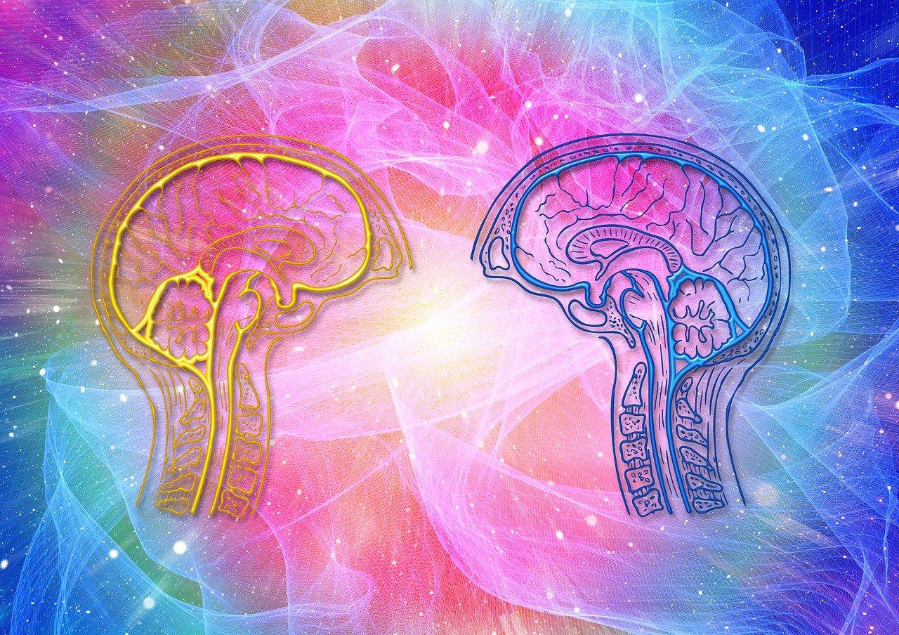 brain, wave, awareness