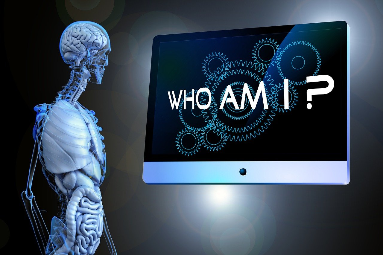 sense, question, anatomy